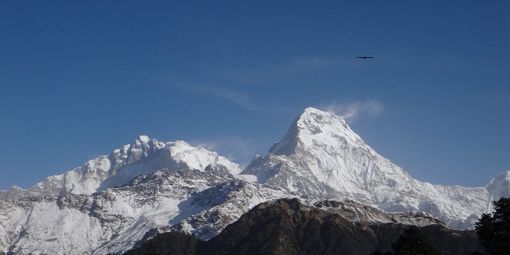 Views from Poon Hill Annapurna South and Baraha Sikhar!