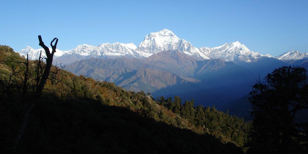 Over Eight Thousand Meter Mountain Dhaulagiri view!